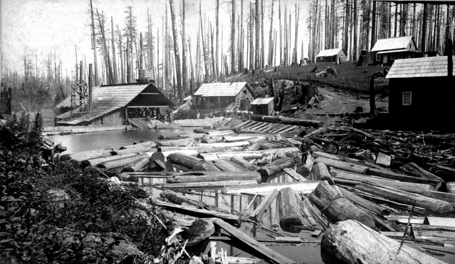 Rainier, Oregon - Charles R  Wilson & Co  Saw Mill